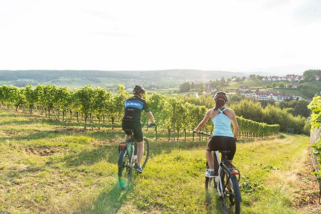 Cycling holidays in Styria at the European Ayurveda Resort Mandira