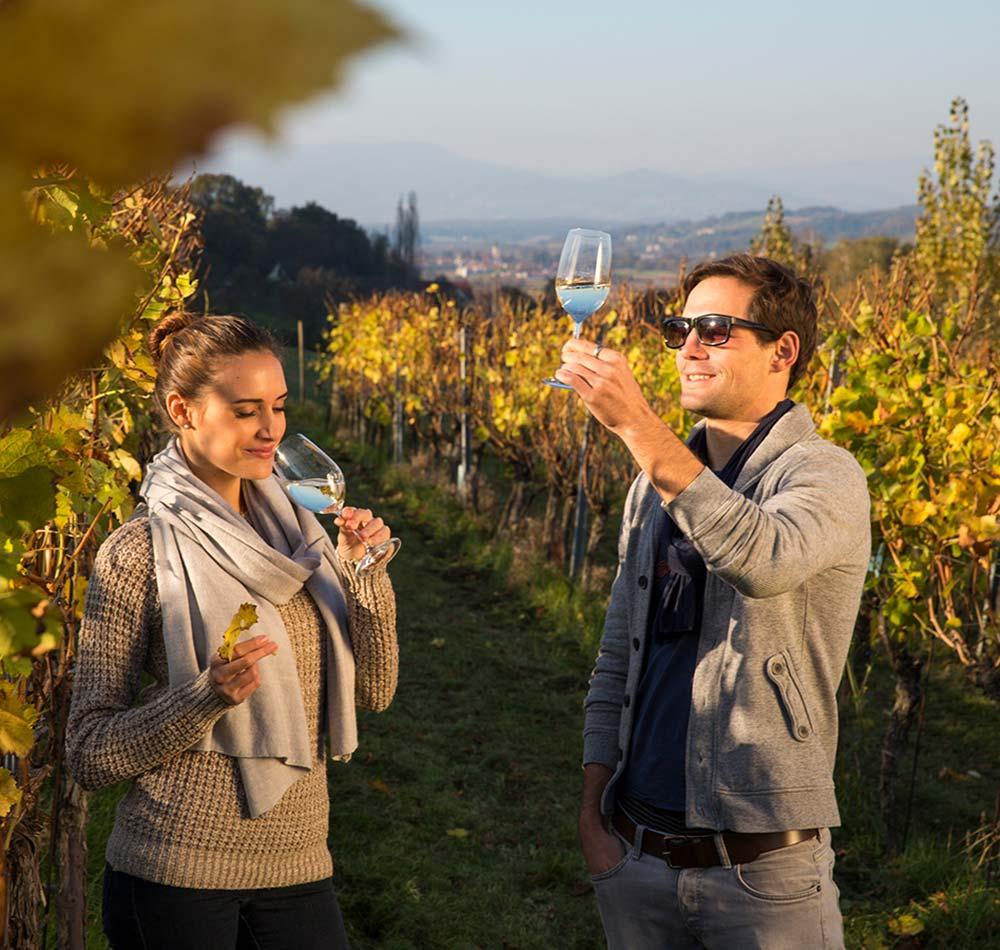 Weinkultur im Vulkanland Steiermark - European Ayurveda Resort Mandira Styria