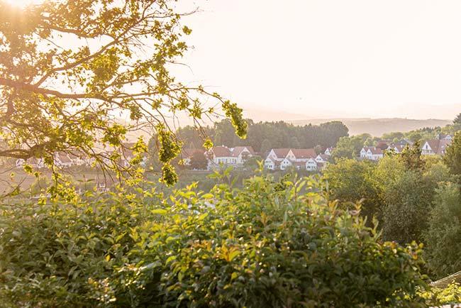 Vielfalt erleben im Ayurveda Urlaub in der Steiermark Bad Waltersdorf