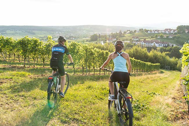 Ayurvedic therapy with exercise and regeneration in Bad Waltersdorf