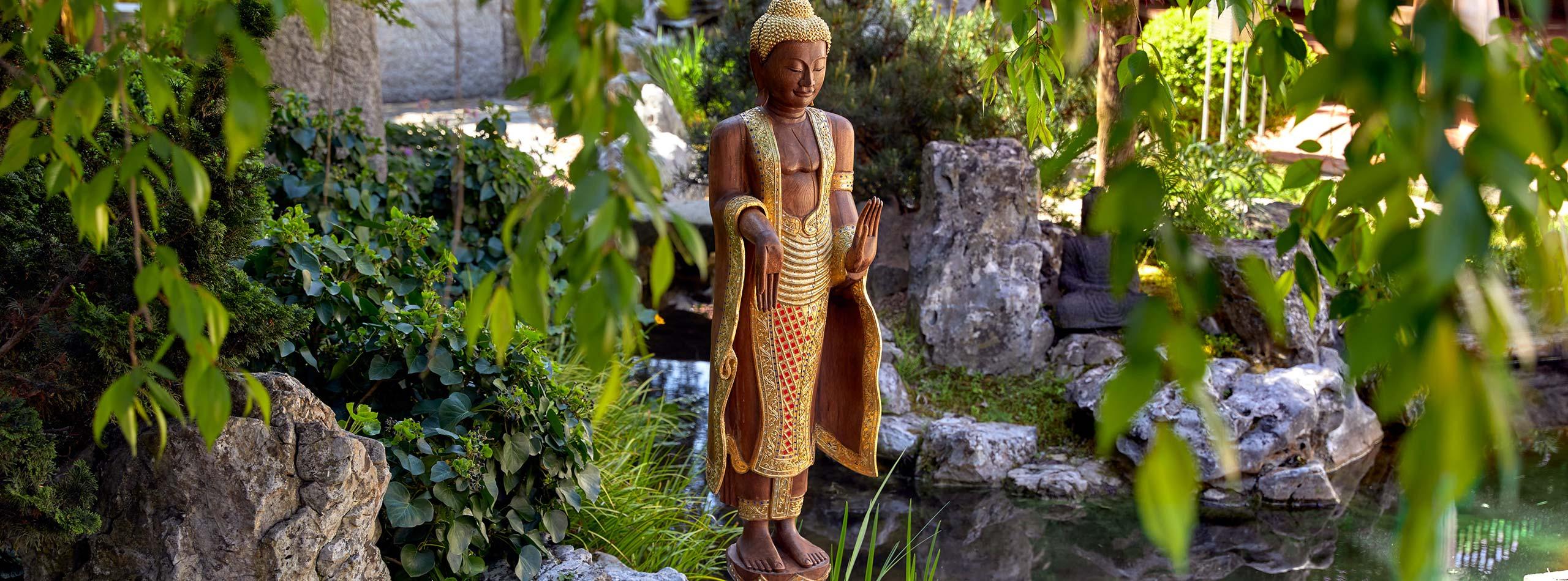 Kinesiologie, die Lehre der Bewegung im Ayurveda Resort Mandira