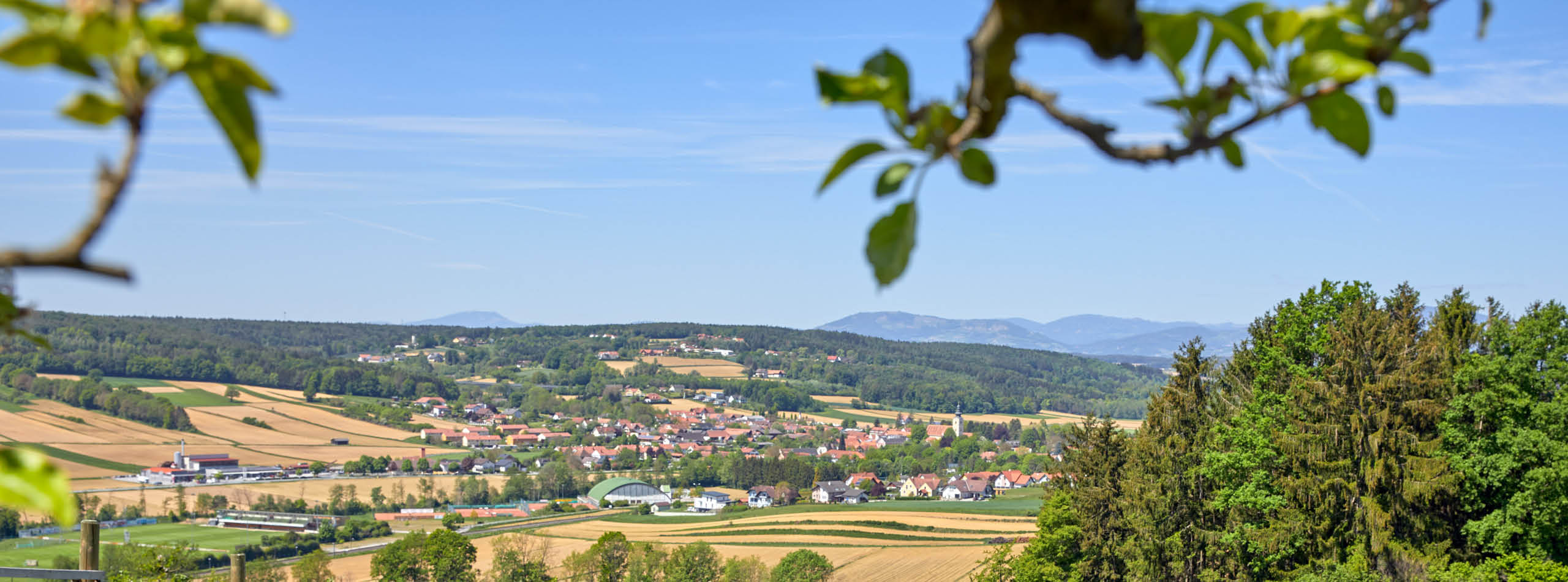 Experience variety on your Ayurvedic holiday in Styria's Bad Waltersdorf
