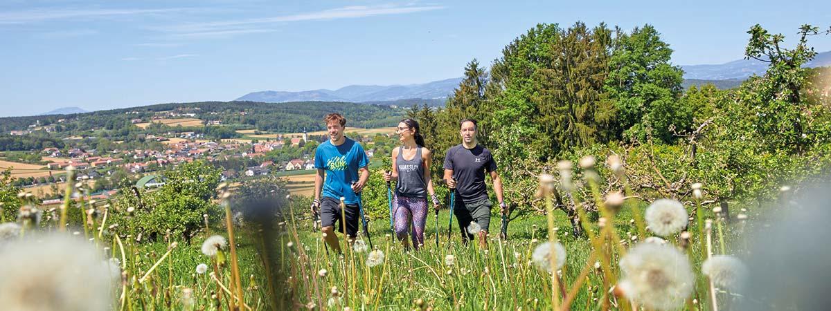 Ayurveda Therapie Sport und Regeneration